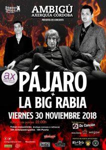 PÁJARO + La Big Rabia @ Sala Ambigú Axerquía Córdoba